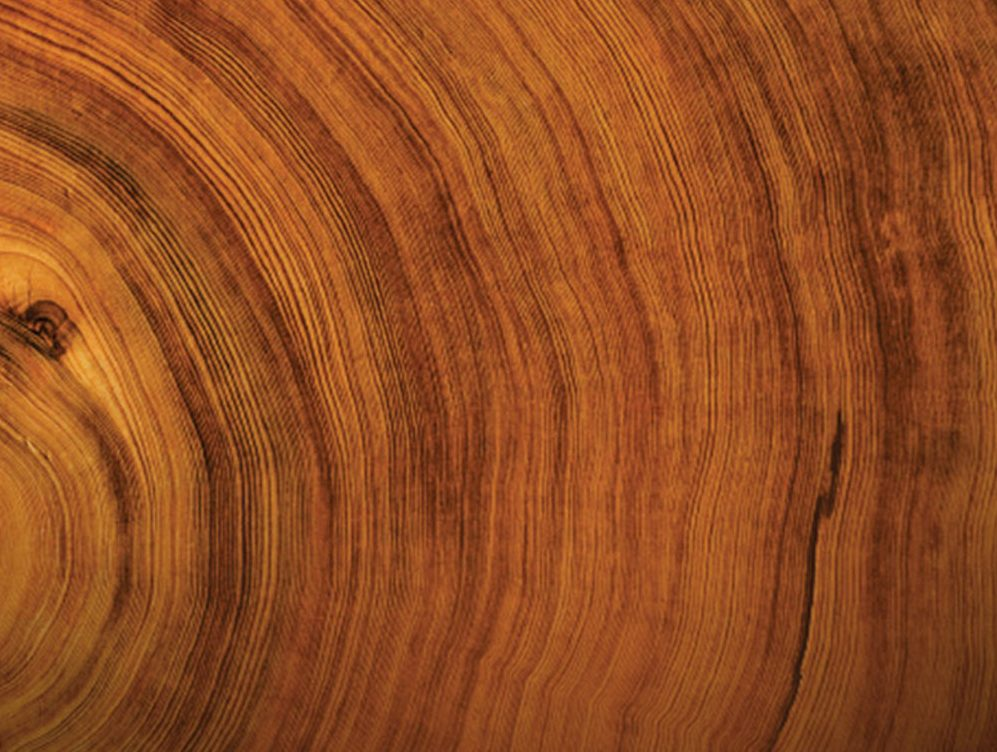 sandalwood for wooden hand watches