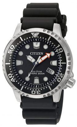 Seiko vs Citizen dive watches